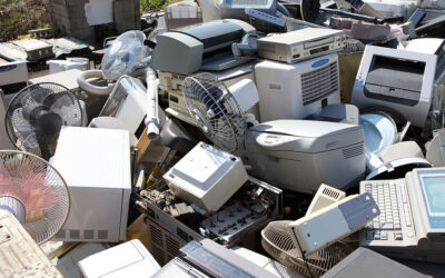 Importance of Junk Removal